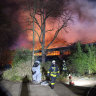 New Year's lanterns blamed for German zoo fire that killed 30 animals