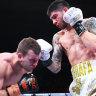 Zerafa stuns Horn with ninth round knockout in the Battle of Bendigo