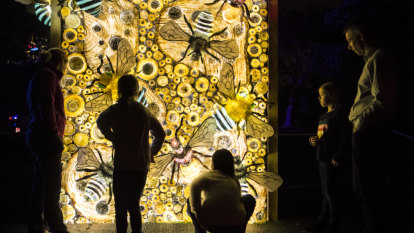 'Sydney at its best': your Vivid 2019 survival guide