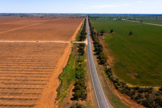 A walnut farm near Tabitta in the NSW Riverina. Perennial crops, such as nuts, can typically outbid dairy and some other annual crops such as rice.