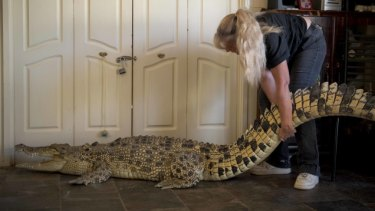 See ya later: The pet crocodile being driven out of her Melbourne home