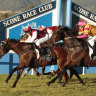 Race-by-race tips and preview for Scone on Thursday