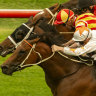 Three's a crowd for Lees in Nivison Stakes