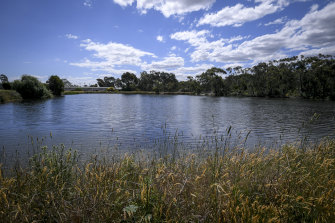 Lake Knox and its surrounding vegetation plays host to a variety of fauna.