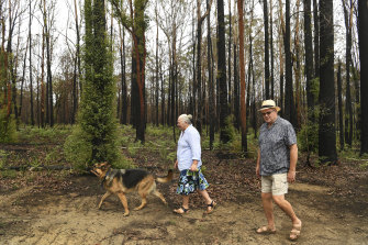 """Daintry and Ian Gerrand are focusing on """"renewal"""" as the land around their Johns River property heals after November's bushfire."""
