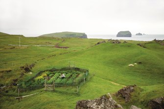 The kitchen garden for Slippurinn,Gisli Matthias Auounsson's Icelandic restaurant.