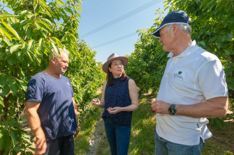 Cherry farmers Peter Foster (left) and Andrew Fairley chat with Agriculture Minister Jaclyn Symes.