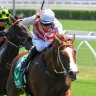 Trope on show as exciting spring starts for Team Hawkes