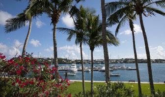Sydney man Greg Dwyer has been living an idyllic lifestyle in Bermuda.
