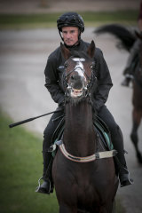 Glen Boss rides Melbourne Cup favourite Constantinople in trackwork at Flemington last week.