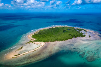 Low Island, in Australia's Great Barrier Reef, where Emma Camp is studying hyper-resilient corals.