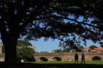 The NSW government is considering Wentworth Park as an option for motorists.
