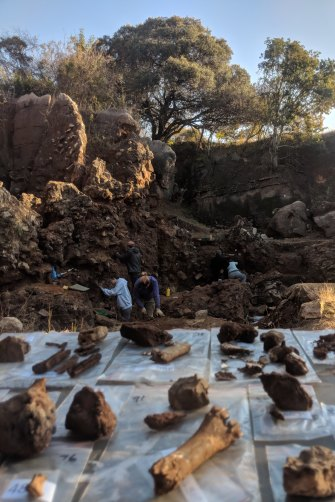 The dig site in Drimolen, about 40 kilometres north of Johannesburg, where the fossil fragments were unearthed.