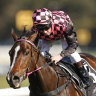 'Apprehensive and nervous', but Heathcote believes Rothfire is back