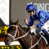 Winx picture-perfect for Sydney farewell