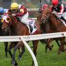 Fierce win in Makybe Diva, Russian Camelot on song