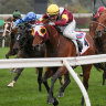 Brother of Makybe Diva Stakes winner a chance to claim title