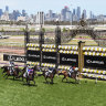 'Not a single horse booked' to travel from overseas to Melbourne for spring carnival
