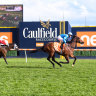Crosshaven and Instant Celebrity head to Guineas after Prelude wins