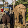 Dreamnight at Taronga Zoo to 'offer a positive and happy experience'