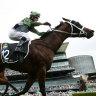 No, no, no: Waller faces wait on Everest victor's scans