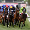 VRC recruiter draws big names to Melbourne Cup