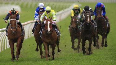 Nash Rawiller on Eduardo (yellow) runs away from Nature Strip at Randwick yesterday.