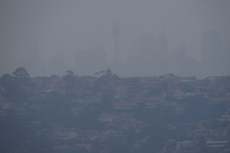 Smoke blankets Sydney on January 24.