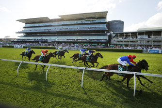 Savatiano (inside) and Mizzy hit the line in Saturday's group 1 Canterbury Stakes at Randwick.
