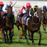 Race-by-race guide and tips for Taree on Sunday