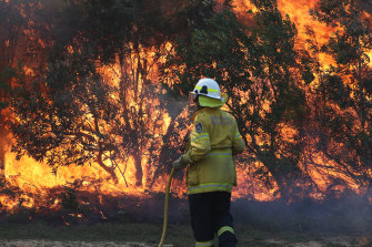 Fires burnt for weeks in the regions around Grafton.