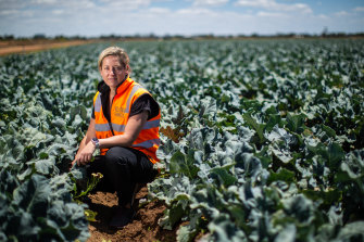 Catherine Velisha says the repercussions of the labour shortage have yet to be felt and the emotional and financial burden on farmers will be dire.