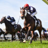 'Surprise' at international entries for Melbourne, Caulfield cups
