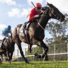 Exoboom gives Clipperton win 500 in Hawkesbury Guineas