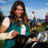 'Fundamentally unfair': Dogs of war unleashed on Sydney's beaches and parks