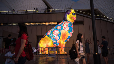 A dog lantern at Sydney's Lunar New Year celebrations.