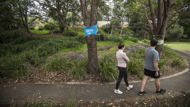 Buruwan Park, between the Rozelle Bay light rail stop and the Crescent and City West Link, will disappear because of WestConnex.