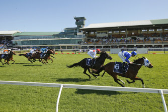 Tommy Berry takes the Spring Stakes on The Elanora.