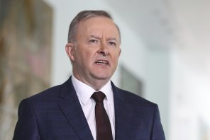 Anthony Albanese's plan aims to tap into frustration among people who cannot find work or get enough hours to boost their salaries.