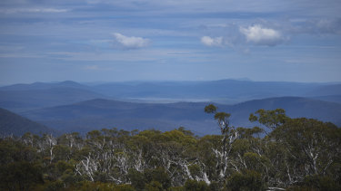 A view of Tantangera, NSW where wild horses have an established population in the thousands.