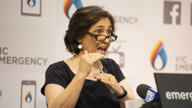 Victorian Energy Minister Lily D'Ambrosio speaks on Friday about the failure of the state's power grid.