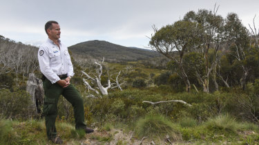 ACT parks manager Brett McNamara stands overlooking the valley below Mount Gingera in Namadgi National Park.