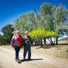 'Planting your memory': Farm offers different form of tribute