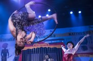 Natives Go Wild harks back to the age of P.T. Barnum.