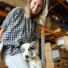 Puppies! At work? Wishful thinking or the future of office life