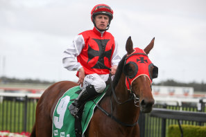 Monegal returns to scale after winning on Gong Day at Kembla Grange