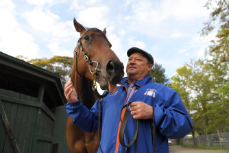 Trainer Tony McEvoy at the stables with Sunlight.