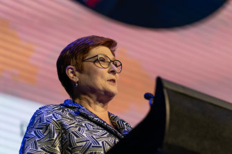 Marise Payne speaking at the Future Women Leadership Summit on March 9.