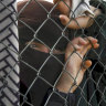 Labor urges safe passage for Islamic State children trapped in Syria