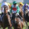 'This could be his massive race': Litt's Plate plea for Castelvecchio